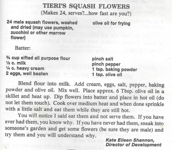 squash flowers recipe
